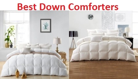 Top 10 Best Down Comforters for the Money in 2017