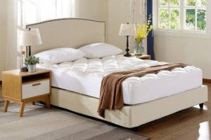 Cheer Collection Ultra Plush Eco-friendly Hypoallergenic Bamboo Fitted Mattress Topper