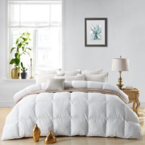 This Egyptian Bedding LUXURIOUS 800 Thread Count HUNGARIAN GOOSE DOWN  Comforter