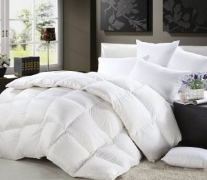 5a6fc3d99f 1200 Thread Count TWIN   TWIN XL Size Siberian Goose Down Comforter 100%  Egyptian Cotton 750FP