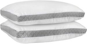 Eddie Bauer 350 TC 700 Fill Power White Goose Down Comforter
