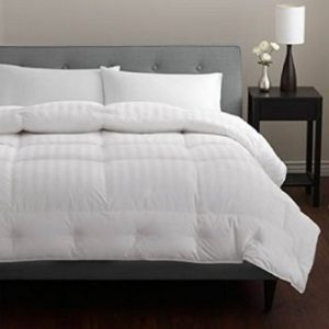 Pacific Coast European Down Comforter