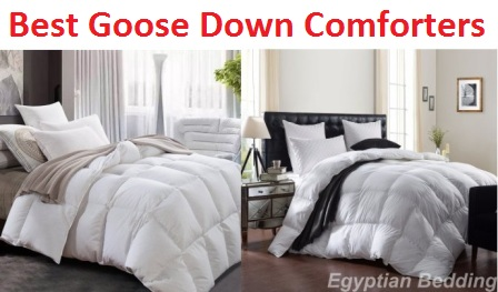 Top 10 Best Goose Down Comforters in 2017