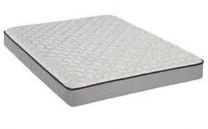Sealy Maple Grove Firm Top Mattress