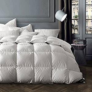Globon Winter Washable White Goose Down Comforter King Size