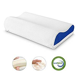 LANGRIA Orthopedic Memory Foam Contour Bed Pillow