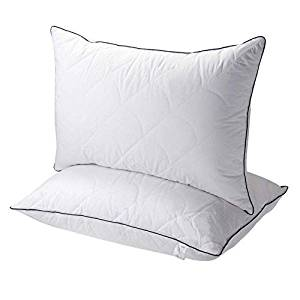 Pillows for Sleeping from Sable, Goose Down Alternative Bed Pillow 2 Pack