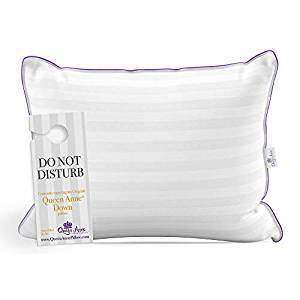 The Original Queen Anne Pillow – French Goose Down Luxury Pillow – Hotel Collection