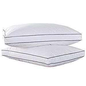 PEACE NEST Down Pillow Set of 2