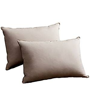 SNOWMAN Luxury Down and Feather Pillow for Bedding Sleeping