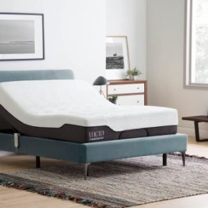 Top 15 Best Electric Beds in 2019