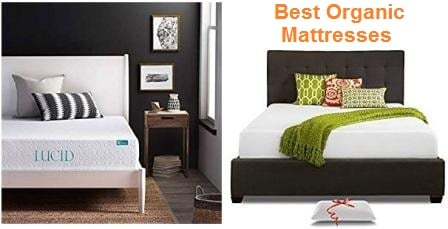 Top 20 Best Organic Mattresses in 2019