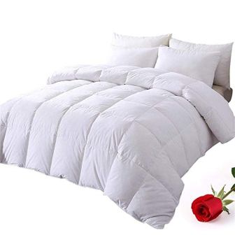 Downcool Cotton Quilted Down Comforter with Corner Tabs
