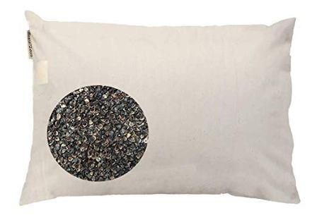 Beans72 Organic Buckwheat Pillow