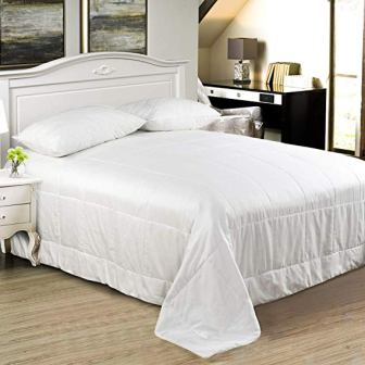 Since Silk 100% Mulberry Natural Silk Comforter/Duvet/Quilt