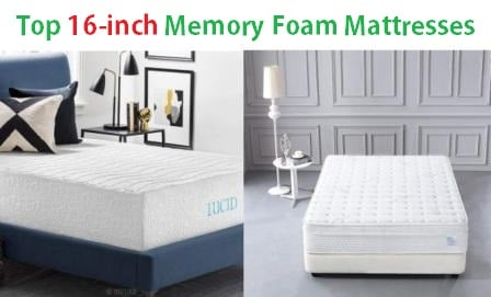 Top 16-inch Memory Foam Mattresses in 2019