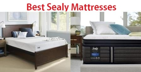 Top 15 Best Sealy Mattresses In 2020