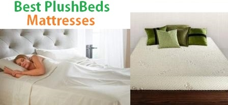 Top 6 Best PlushBeds Mattresses Reviews in 2019