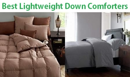 Top 15 Best Lightweight Down Comforters in 2019