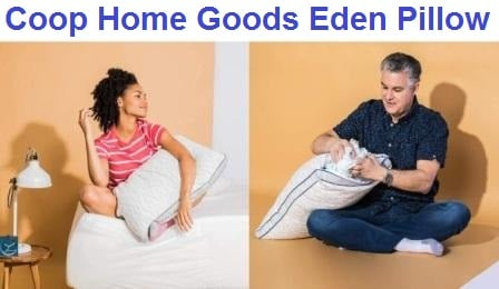 Coop Home Goods Eden Pillow - Complete Review 2020