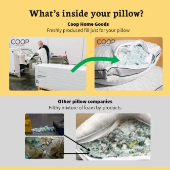 Coop Home Goods Eden Pillow Review 2020