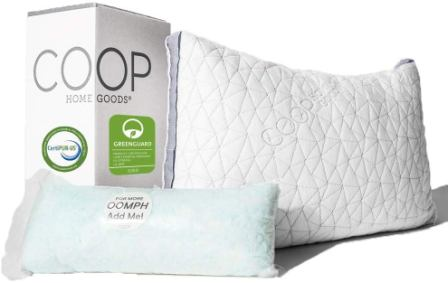 Coop Home Goods Eden Pillow Review 2020