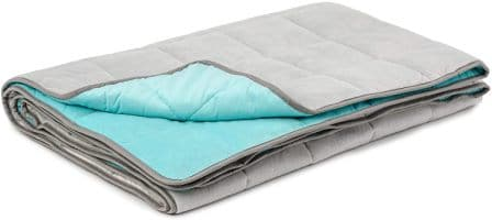 Luxome Adult Weighted Blanket with Integrated Ultra-Plush Minky Cover