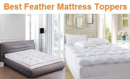 Top 12 Best Feather Mattress Toppers in 2020