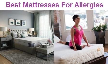 Top 15 Best Mattresses For Allergies in 2020