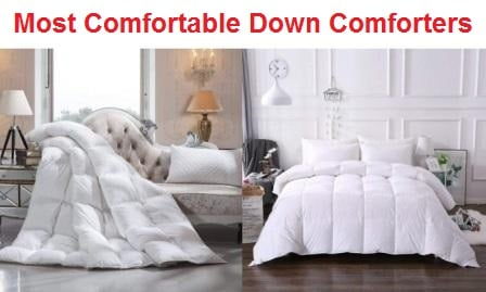 Top 15 Most Comfortable Down Comforters in 2020