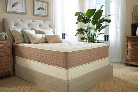 Eco Terra 11-Inch Natural Latex Hybrid Mattress