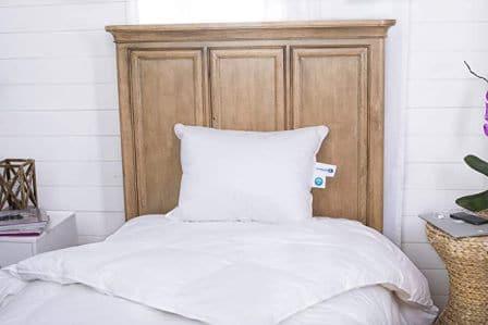 Continental Bedding Premium Goose Pillow