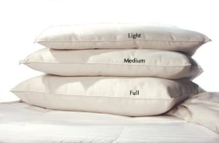 Lifekind Certified Organic Cotton Pillow