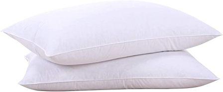 Puredown Natural Goose Down White Feather Pillow