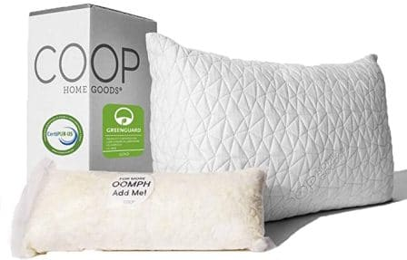 Queen-size shredded memory foam pillow by Coop Home Goods